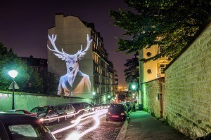 Artist Lights up the Streets of Paris With Hipster Wildlife