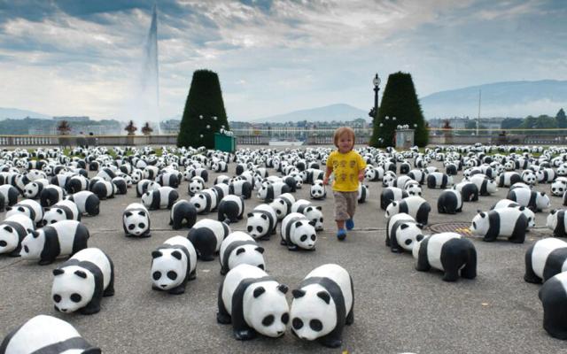 Pandas Invade Paris!