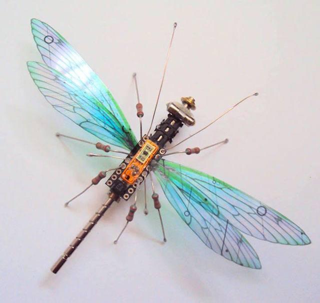 computerdragon-fly