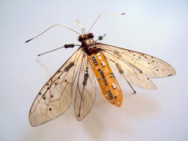 insectnintendo