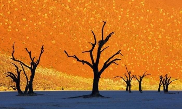 deadvlei namibia2