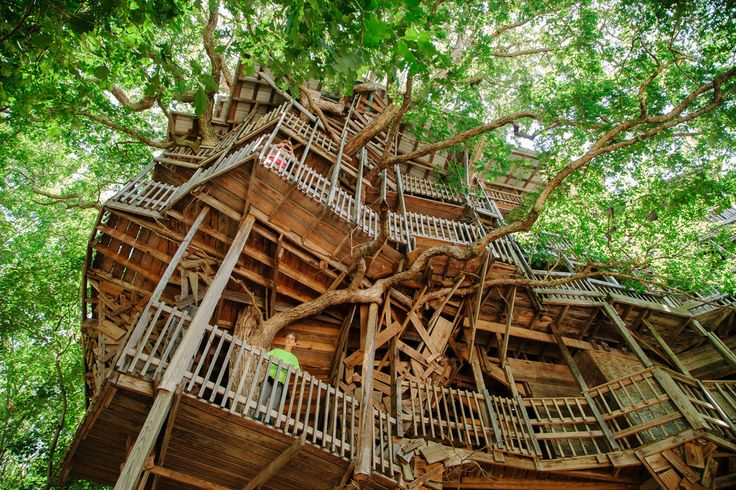 Take a Virtual Tour of the World's Biggest Treehouse