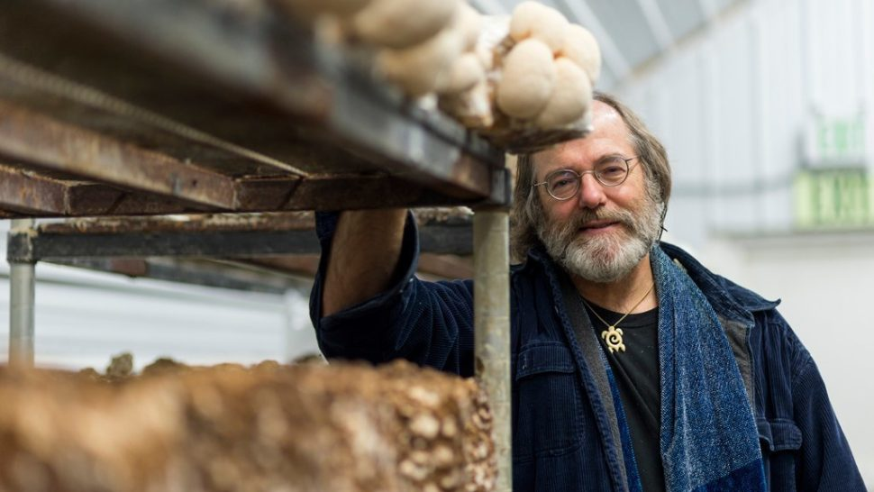 This Man Thinks Mushrooms Can Fix the Environment and Take Down Monsanto
