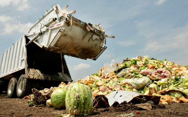 Colorado Found a Solution to Fix the $165 Billion Food Waste Problem