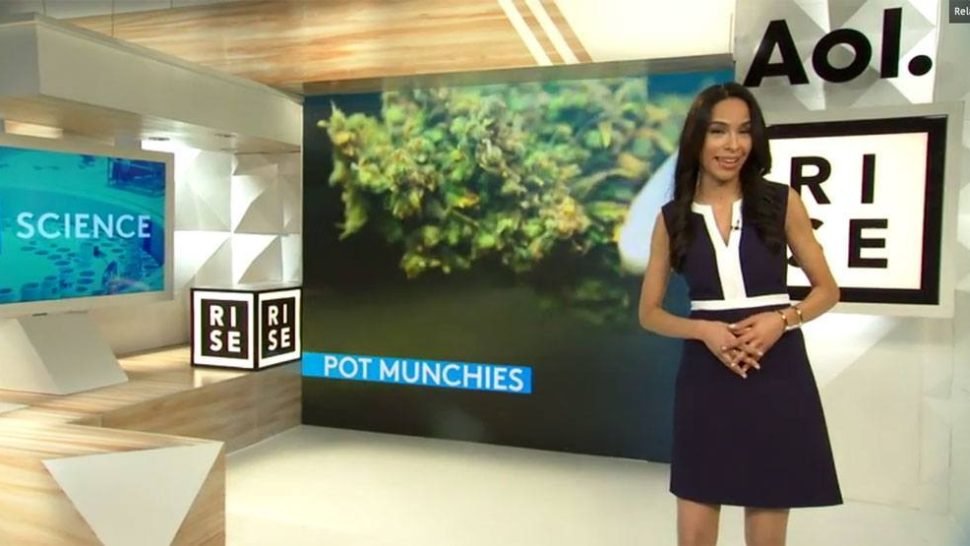 Rise and Shine with Bite-Sized News