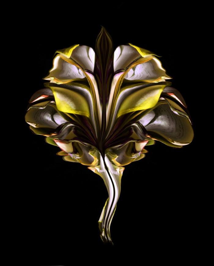 flowerbook34