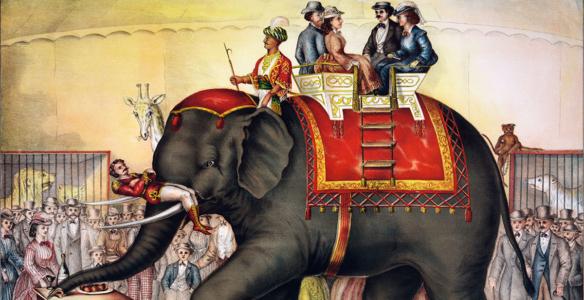 circus-elephant-fb