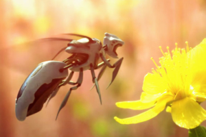 Why We Should be Excited About, Not Scared of, Robot Bees