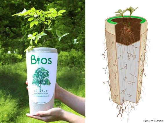 Bios urn cost