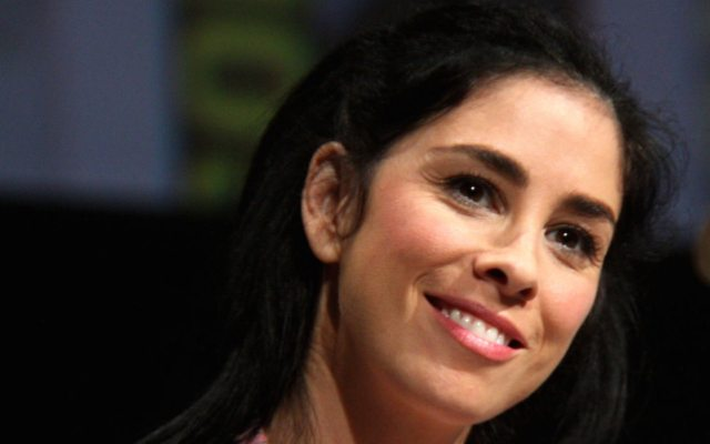 Sarah Silverman's Kindness Towards a Sexist Troll is the Lesson We All Need