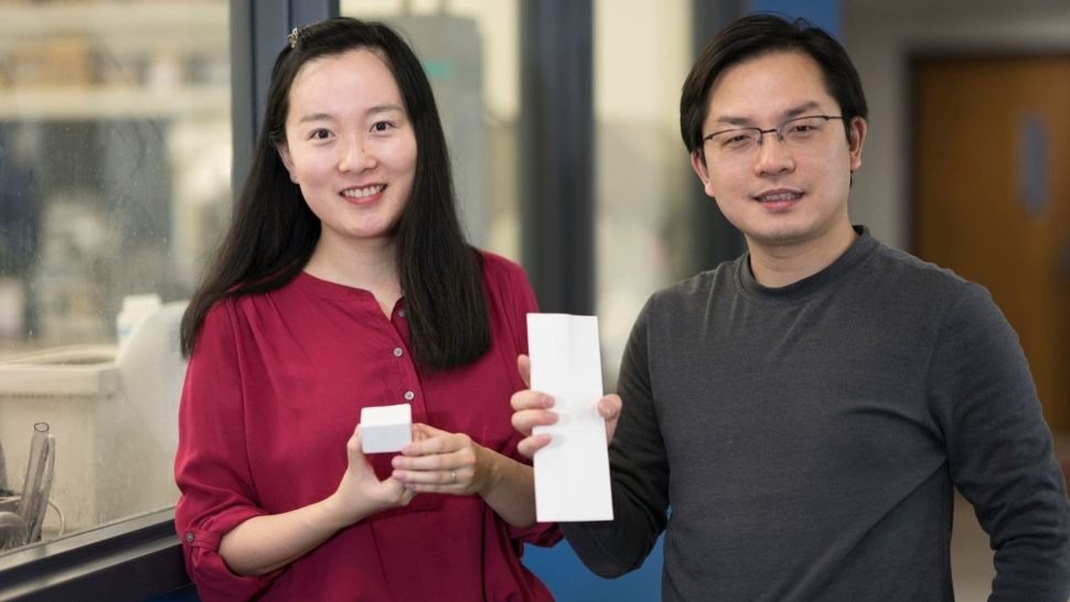 Styrofoam Sucks, so She Invented 'Nanowood' to Replace it