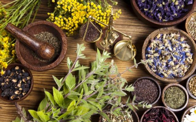 The Naturopathic Medicine Revolution & Women's Health Management